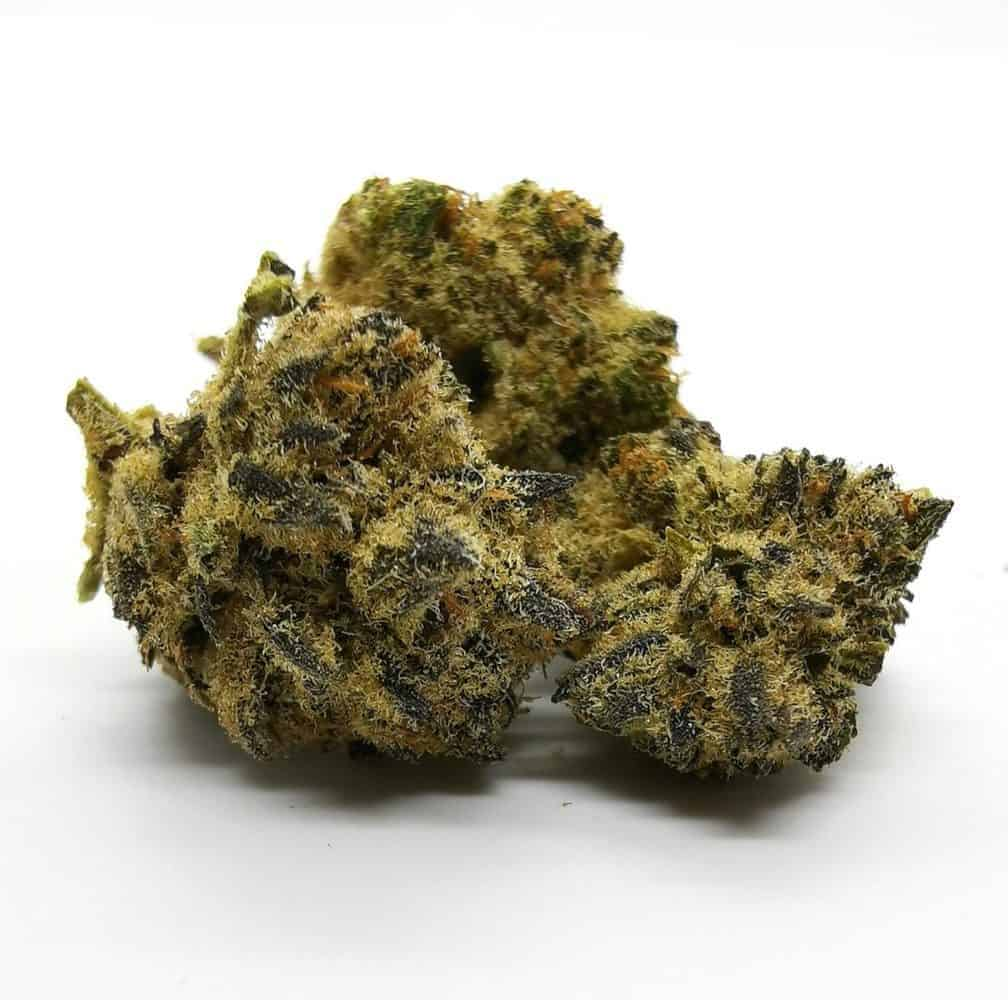 Dancehall strain review, picture of dancehall strain made by Spinach.