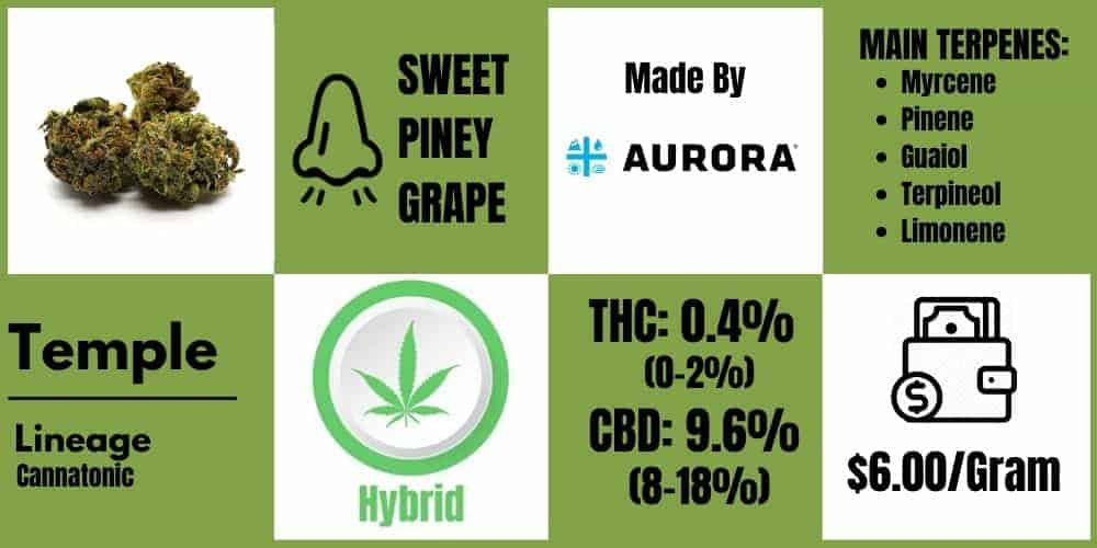 Temple by Aurora Cannabis Review info block