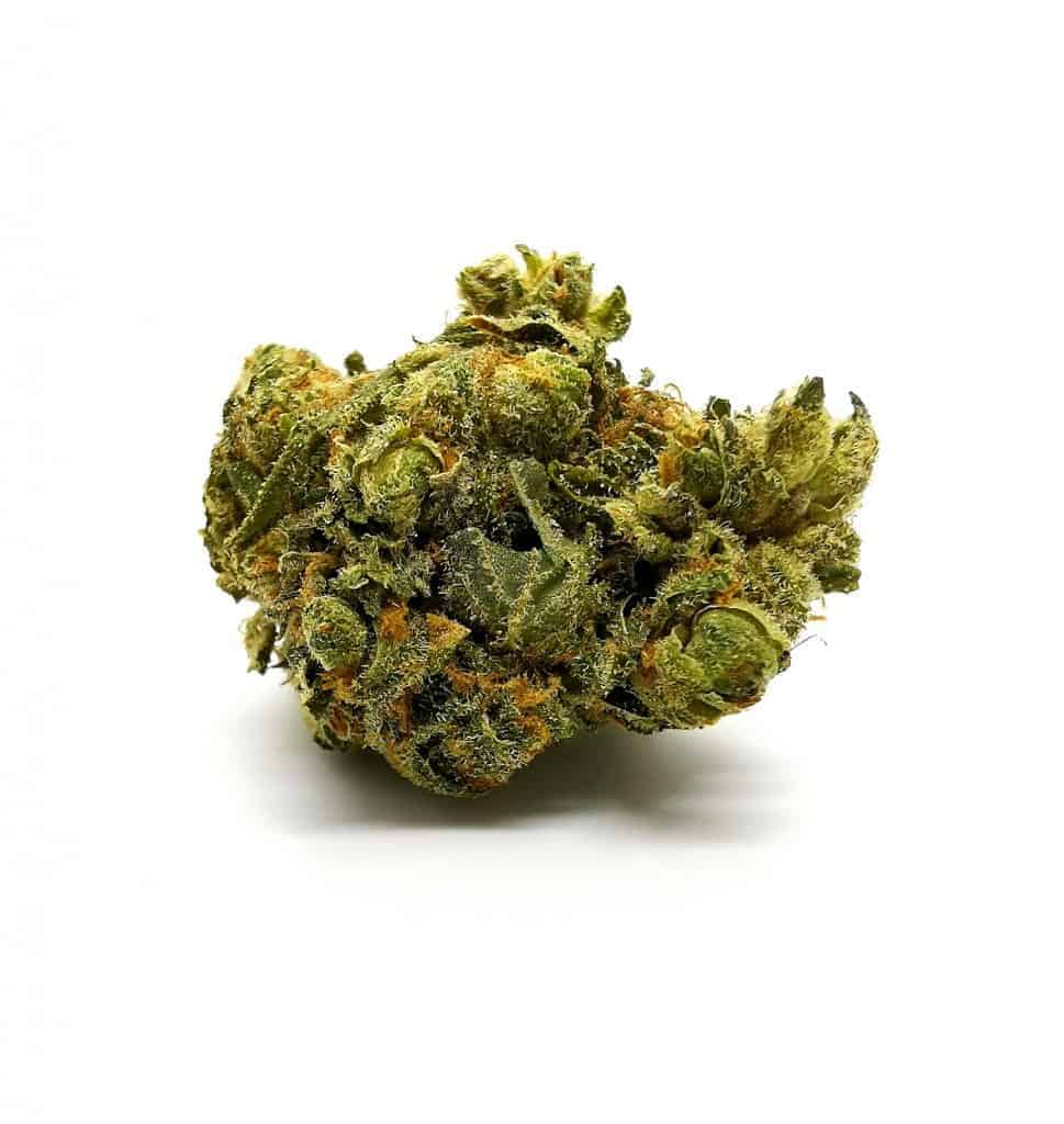 Durga Mata 2 strain review, picture of cannabis