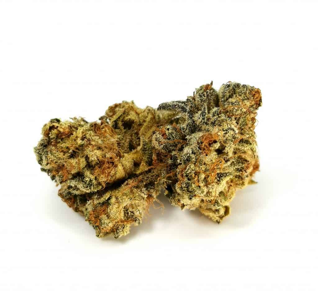 Quadra strain review, picture of cannabis flower