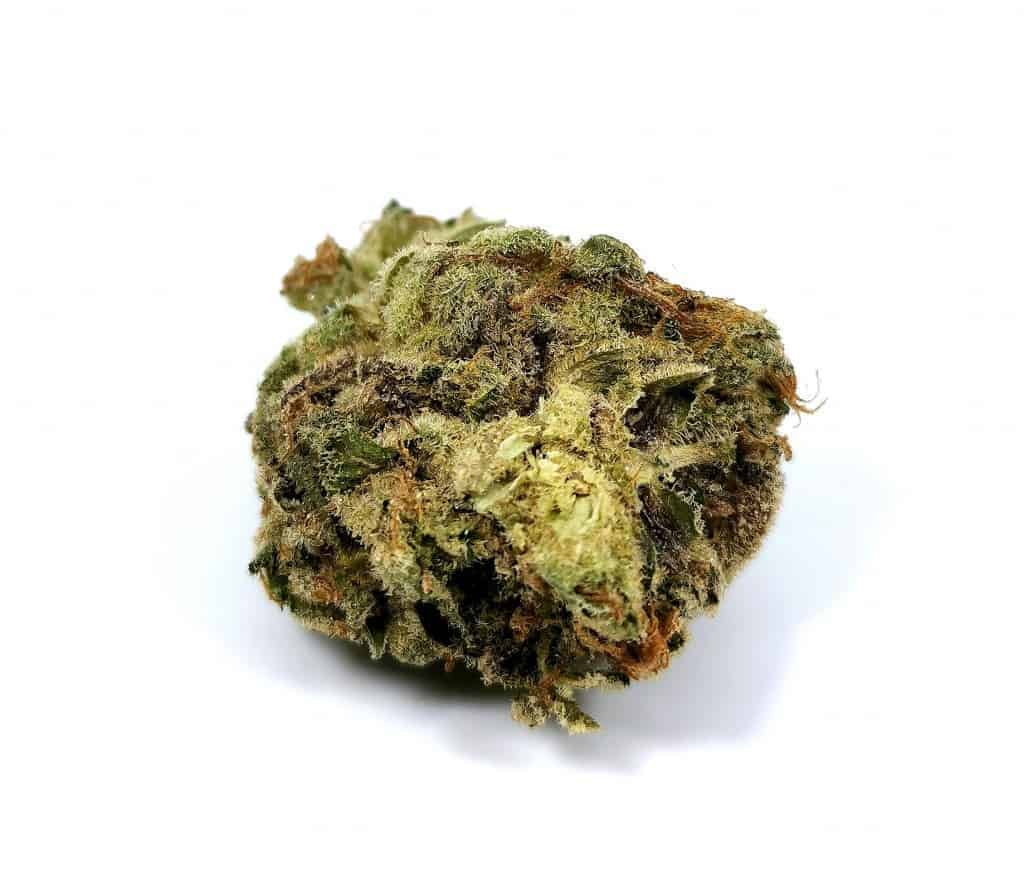 houseplant indica strain review