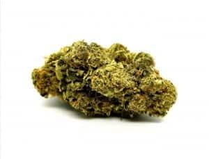 revive reserve strain review picture of cannabis flower cannabis sensei