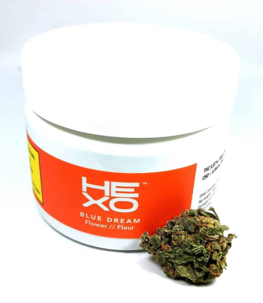 blue dream strain review picture of container and flower