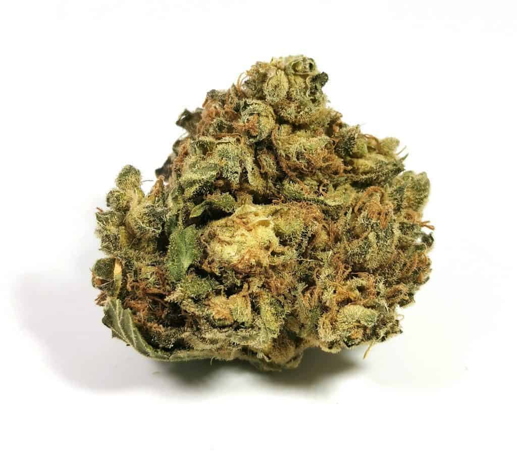 shishkaberry strain review made by re-up cannabis, picture of flower
