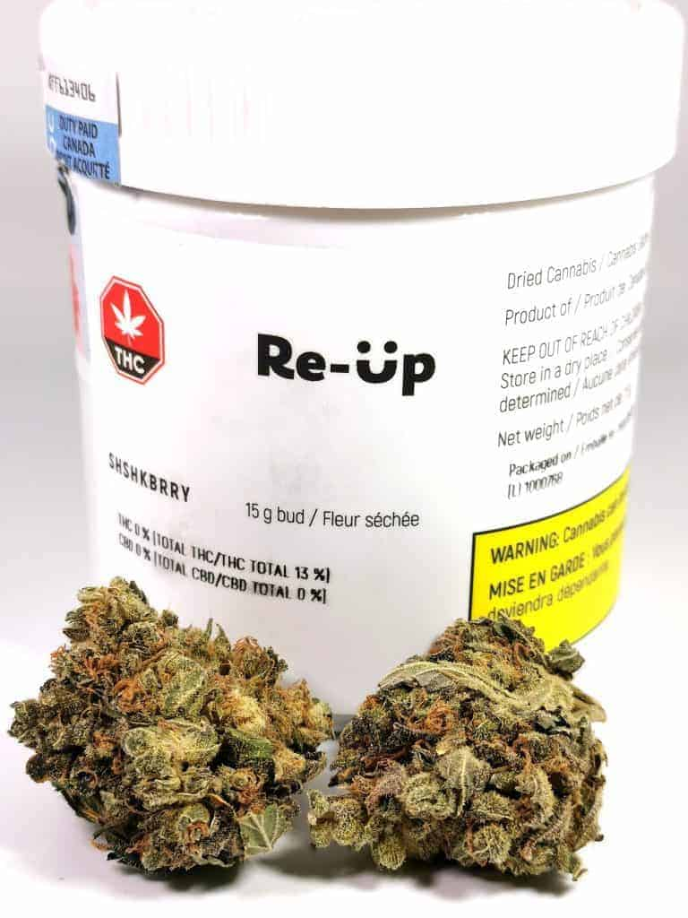 shishkaberry strain review, made by re-up cannabis. picture of flower with packaging.