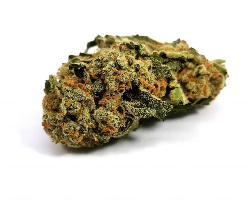 glueberry strain review