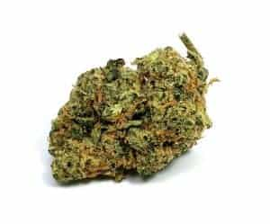 diesel strain review spinach