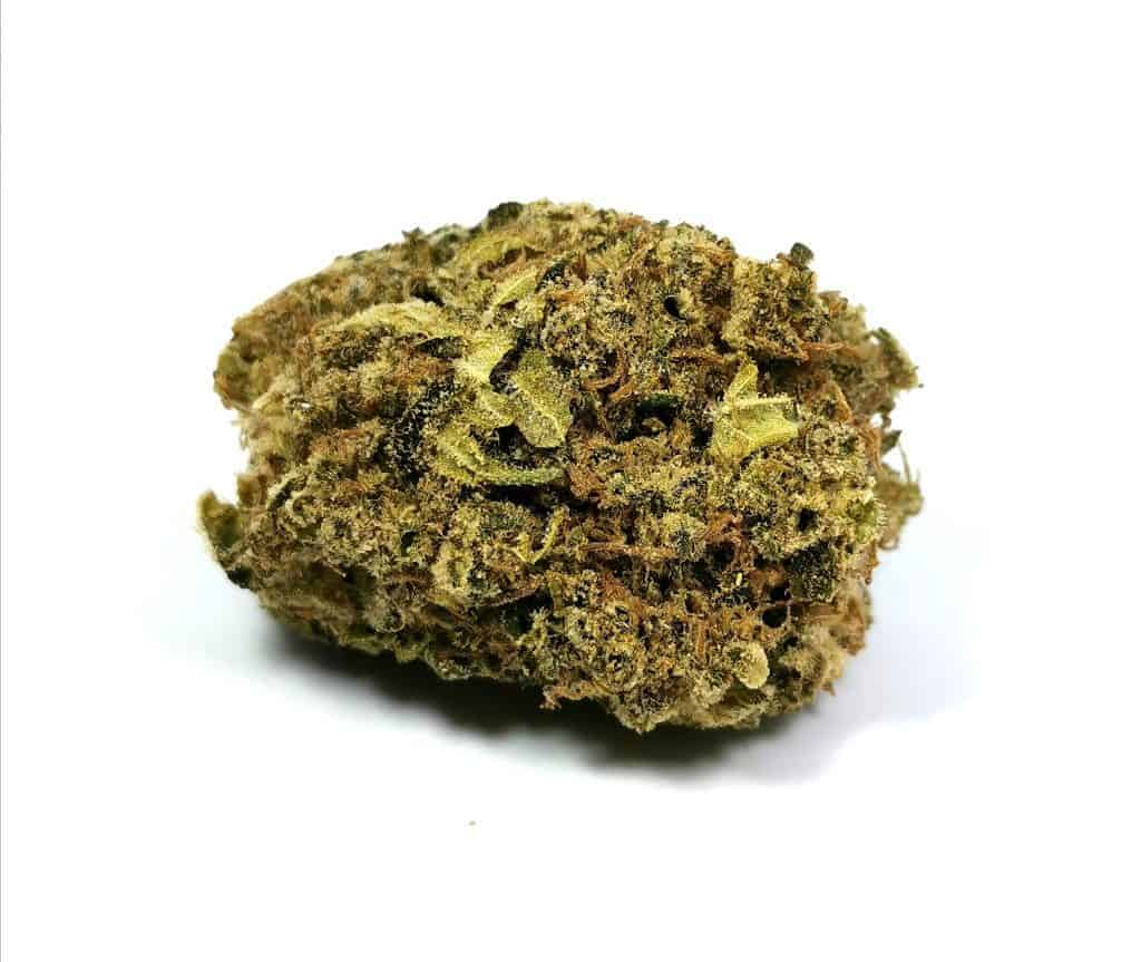 jack haze strain review