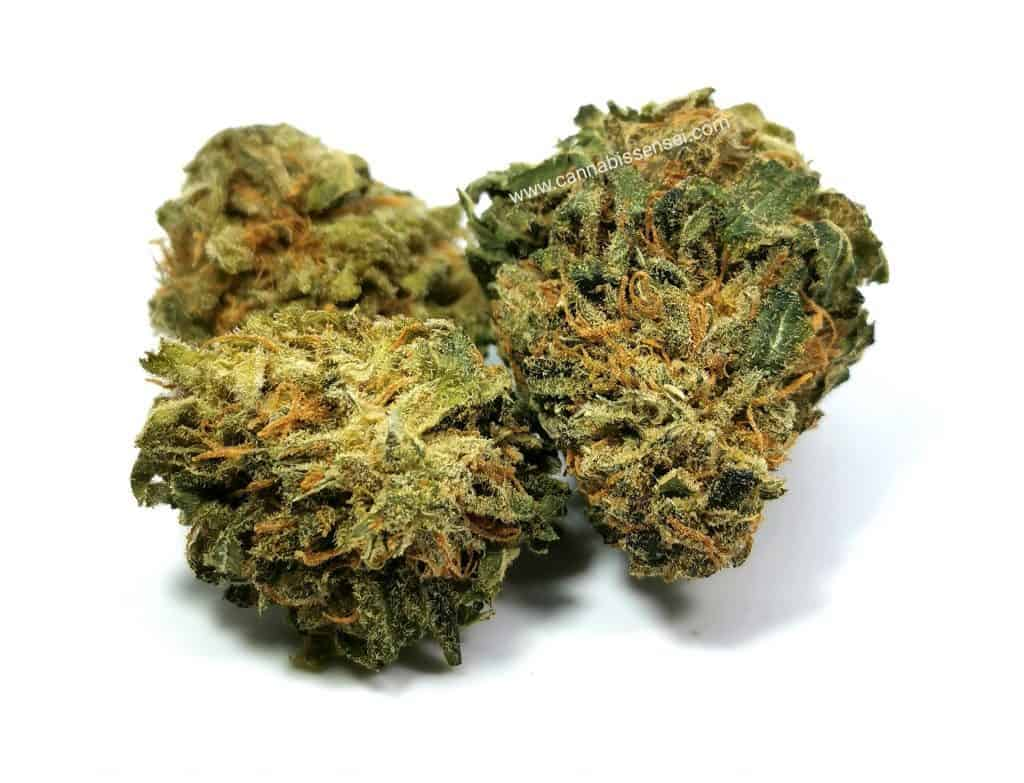 rockstar kush strain review