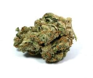 Chemdog strain review