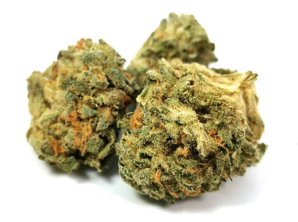 nuken strain review picture of cannabis
