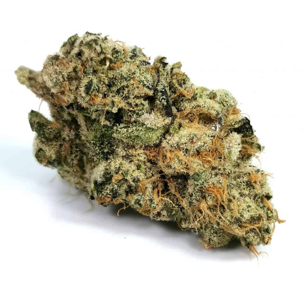 denman strain review picture of cannabis