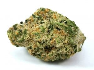bcp strain review