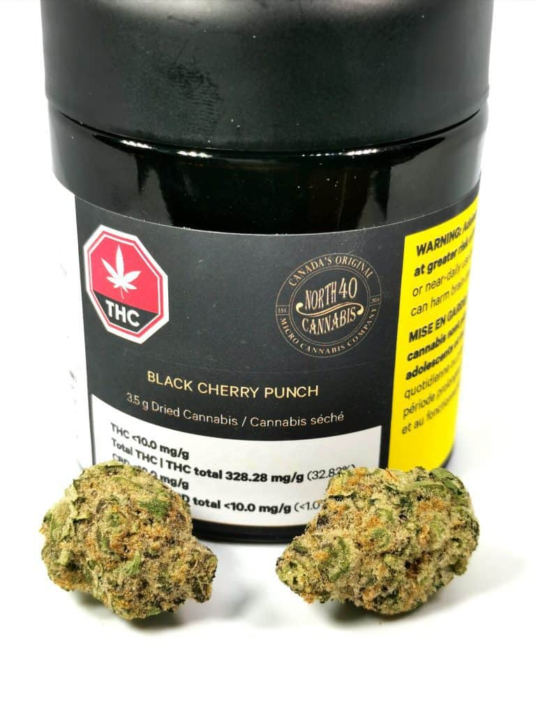 black cherry punch strain review picture of container and cannabis