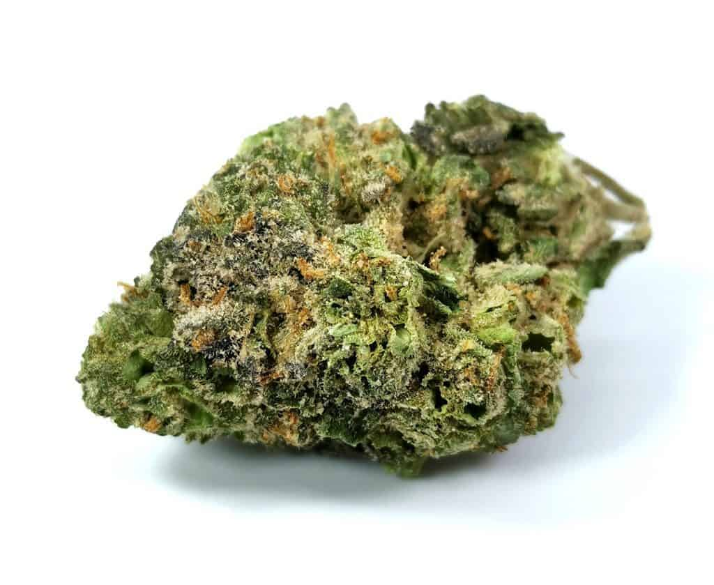 ice cream cake strain reivew picture of cannabis