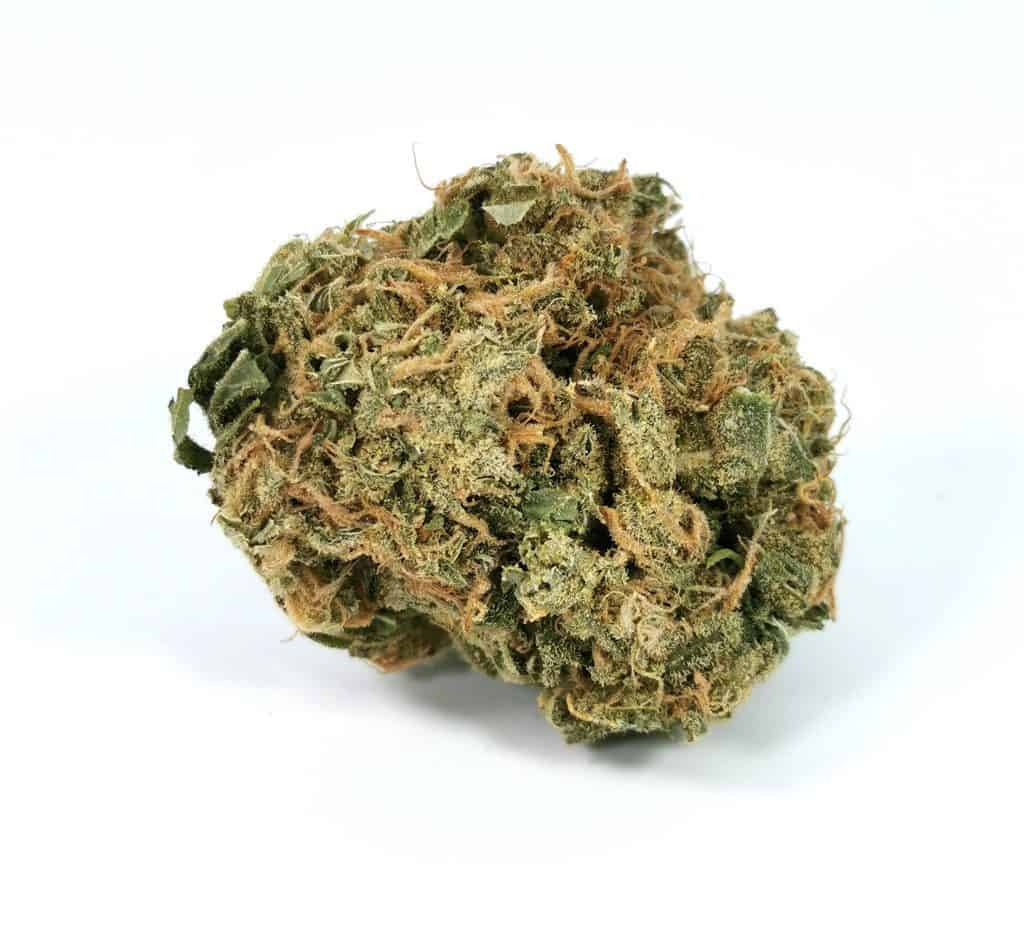 Ultra Sour Wildlife Cannabis picture of cannabis