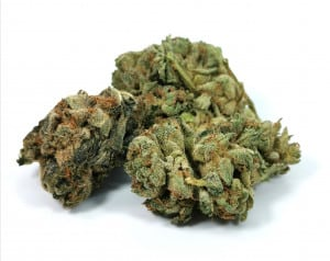 BC Sweet Skunk (Pure Laine Cannabis)