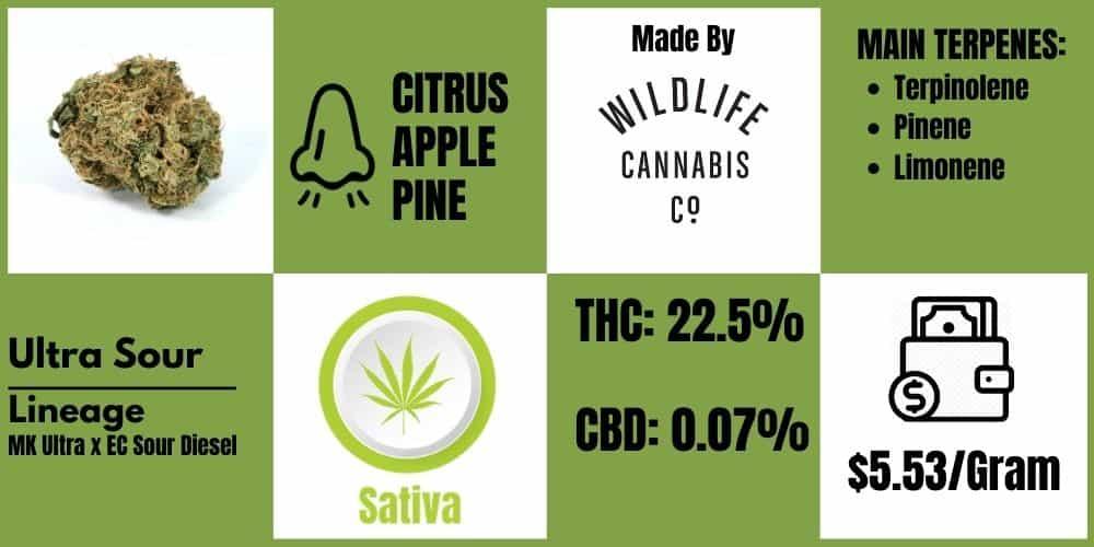 Ultra sour wildlife cannabis cannabissensei.com