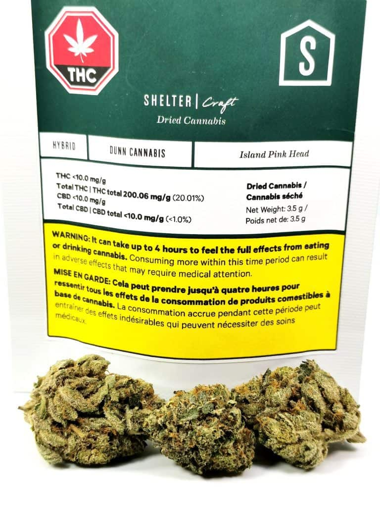 Island Pink Head review picture of cannabis and packaging