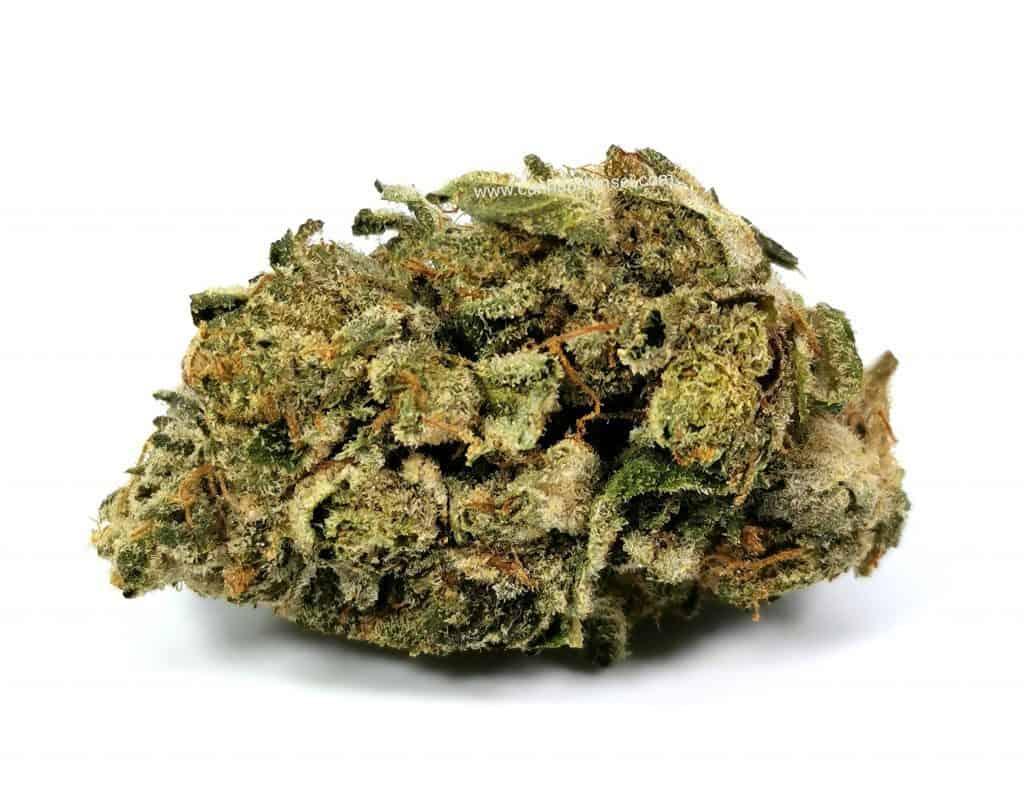 island pink head by dunn cannabis