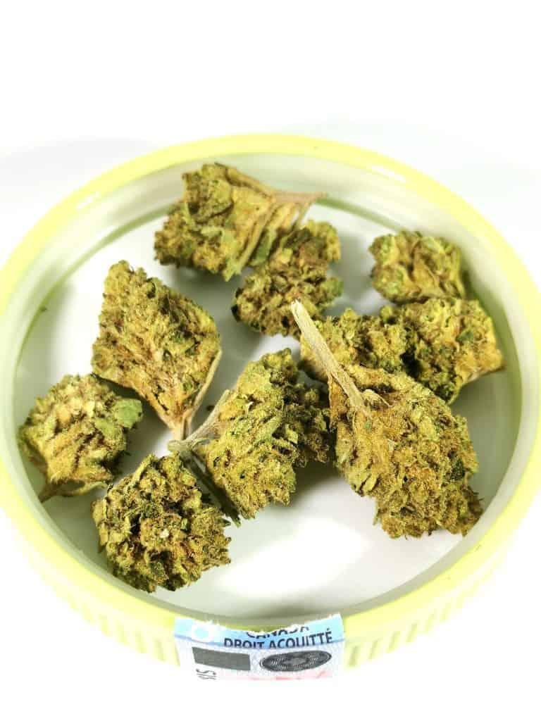 Mendo Breath (Kizos) picture of cannabis