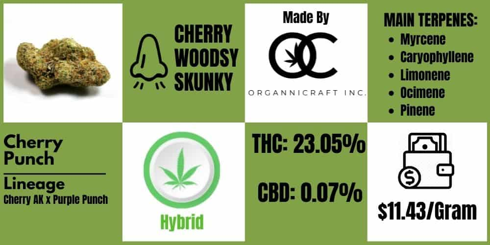 Cherry Punch Strain review infoblock