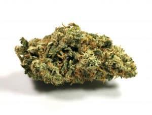 Cuban Linx Strain Review (Tribal) - Cannabis Sensei