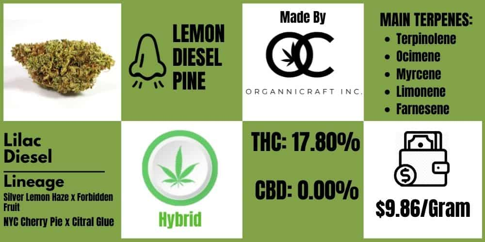 lilac diesel review infoblock